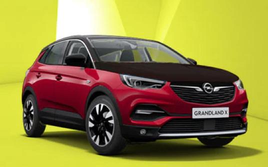 Opel Grandland X Elspeet